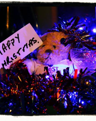 Merry Christmas & Happy New Year from all of us at NeST & the Research Team to you all!!